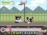 Игра Беги, котёнок, беги! онлайн