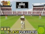 Игра Флеш крикет 2 онлайн
