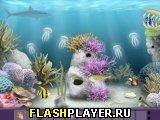 Рифовый побег