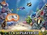 Игра Ловля медуз онлайн