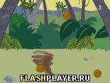 Игра Ловля кокосов онлайн