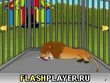 Игра Побег из клетки льва онлайн
