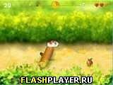 Игра Бегущий хомячок онлайн
