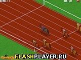 Игра Конное дерби онлайн