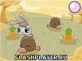 Игра Грызи быстрей онлайн