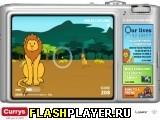 Игра Счастливые животные онлайн