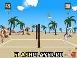 Заячий Пляжный Волейбол