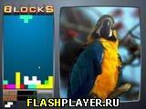 Игра Фотоблоки онлайн