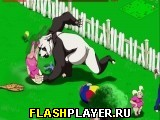 Буйная панда