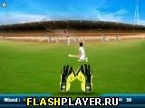 Крикет: Поймай подачу
