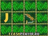 Игра Зоо-алфавит онлайн
