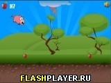 Игра Хрюшка онлайн