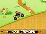 Марио на ATV