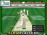 Крикет - Удар на 6