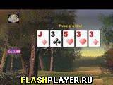 Джокер-покер
