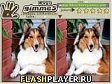 Игра Дай мне 5 собак онлайн
