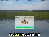 Рыбалка в Кавголово