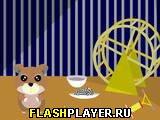 Игра Анипа онлайн