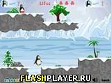Пингвиньи войны