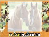 Прекрасные лошадки