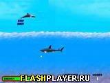 Игра Путешествие дельфина онлайн
