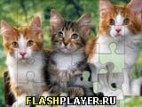 Игра Пазлы: Большие картинки онлайн