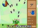 Игра Садовое безумие онлайн