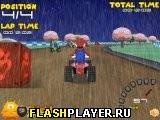 Дождливая гонка Марио