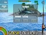 Рыбалка Немо