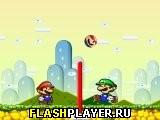 Братья Марио волейбол