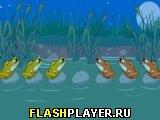 Игра Жабы онлайн