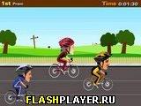 Велосипедные гонки