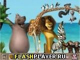 Мадагаскар 3 – Найди детали