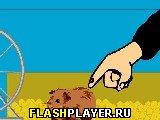 Игра Морская свинка онлайн