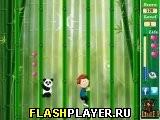 Бамбуковый поход