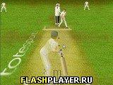 Игра Крикет онлайн