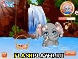 Игра Забавный слон онлайн