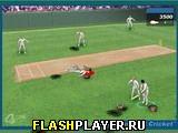 Игра Только не крикет онлайн