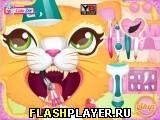 Кошечка у стоматолога