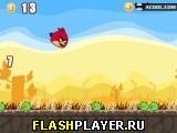 Игра Злые птички – Взрыв взрыв взрыв онлайн