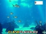 Хардкор рыбка