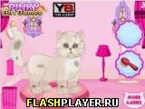 Забота о персидском коте