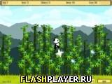 Панда бегун