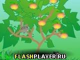 Игра Ежик и яблоки онлайн