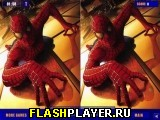 Человек-паук – различия