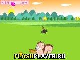 Игра Поймай арахис онлайн