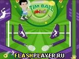 Игра Пинбол Тима онлайн