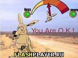 Игра Веселый Кенгуру онлайн