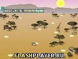 Игра Фото Сафари онлайн
