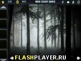 Таинственный туманный лес
